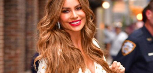 Sofia Vergara – The World's Highest-Paid TV Actresses.