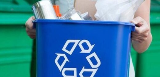 4 Essential Reasons Your Business Should Recycle